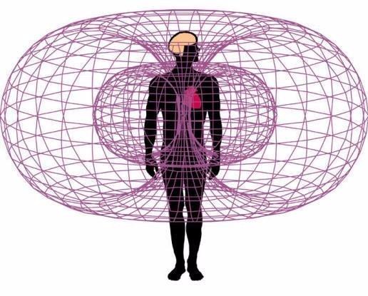 campo_elettromagnetico_del_cuore.jpg