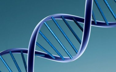 DNA-1.jpg