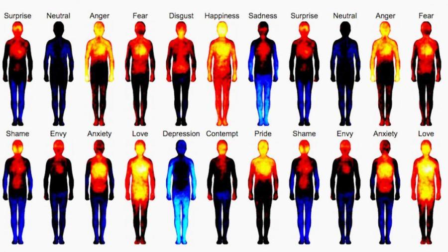 emozioni_trasformano_corpo.jpg