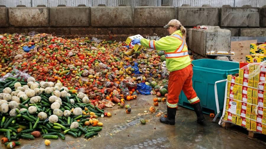 In Svizzera sprecati 300 chili a testa di cibo ogni anno.jpg
