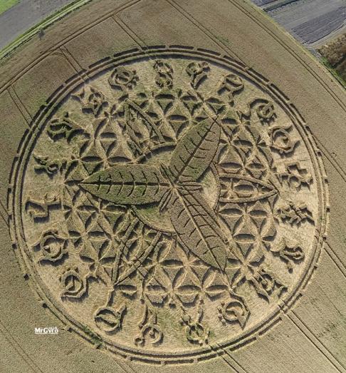 Cerchio nel grano 3