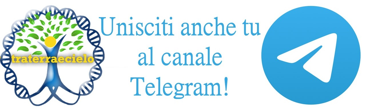 Segui su Telegram